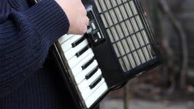 Músico do acordeão de piano video estoque