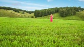Músico en prado verde almacen de video