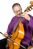 Músico que joga um instrumento Imagens de Stock