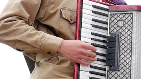 Músico que juega el acordeón Mano que juega el primer de los acordeones Jugador del acordeón almacen de metraje de vídeo