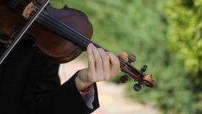 Músico que toca el violín en el fondo del parque almacen de metraje de vídeo