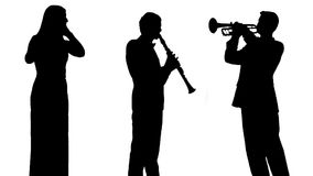 músicos vídeos de arquivo