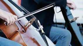 Músicos de la calle que juegan en el parque en una ciudad grande almacen de video