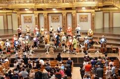 Músicos en la casa del concierto de Viena Imágenes de archivo libres de regalías