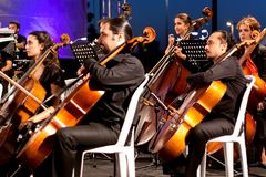 Músicos que juegan el contrabass Fotos de archivo