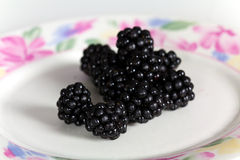 Mûre, fruticosus de Rubus, fin vers le haut photo stock