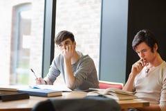 Müde junge Erwachsene, die ihre Anmerkungen wiederholen stockbilder
