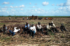 Müde Landwirte lizenzfreies stockfoto