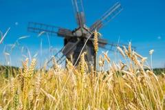 Mühle auf dem Weizenfeld Stockbilder