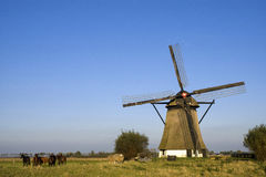 Mühle Oude Doornse Stockfotografie