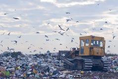 Müllgrube mit Planierraupe Lizenzfreie Stockbilder