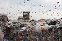 Müllgrubenabfall stockfoto