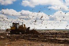 Müllgrubenabfallplanierraupen, die Abfall verarbeiten Stockfotografie