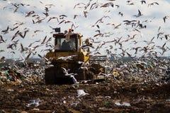 Müllgrubenabfallplanierraupen, die Abfall verarbeiten Lizenzfreie Stockfotografie