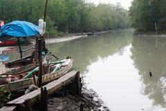 Mündung und Mangroven Stockfotografie