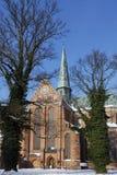 Münster-Schlechtes Doberan Lizenzfreie Stockfotos