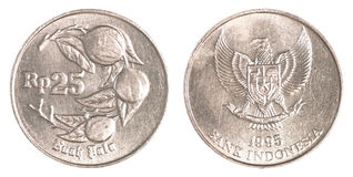 Münze der indonesischen Rupie 25 Stockfotos