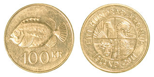 Münze der isländischen Krona 100 Lizenzfreies Stockfoto