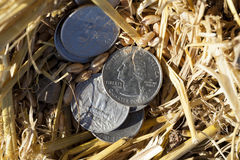 Münze im Stroh Stockfoto