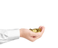 Münze zum Geld in der Hand Lizenzfreie Stockfotos