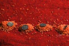 Münzen auf farbigen Reiskörnern Stockbilder