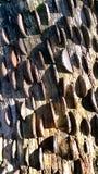 Münzen in der Barke Stockfotos