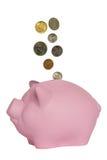 Münzen, die in ein rosa Schwein fallen Stockbild