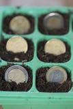Münzen im Boden Lizenzfreie Stockfotos