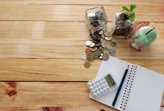 Münzen im Glas für Geldeinsparung und in der Anlage, die in den Einsparungs-Münzen wächst, rütteln für Investition Stockfotografie