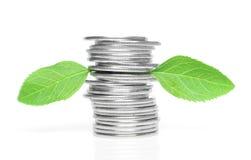 Münzen mit grünen Blättern Stockfoto