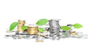 Münzen mit grünen Blättern Stockfotografie