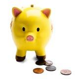 Münzen mit Piggy Querneigung Lizenzfreie Stockfotografie
