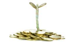 Münzen und Anlage Lizenzfreie Stockfotografie
