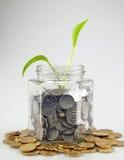 Münzen und grüne Knospe, die im Glas wachsen Lizenzfreie Stockbilder