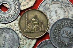 Münzen von Ägypten Stockbild