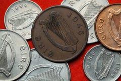 Münzen von Irland Keltische Harfe Stockbilder