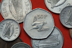 Münzen von Irland waldschnepfe Stockfotografie