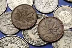 Münzen von Kanada Stockfotografie