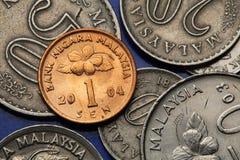 Münzen von Malaysia Stockbilder