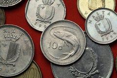 Münzen von Malta Dolphinfish Coryphaena-hippurus Lizenzfreie Stockfotos