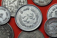 Münzen von Nepal Stockfotografie