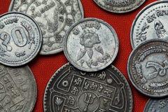 Münzen von Nepal Rhododendronblume Stockbilder