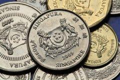 Münzen von Singapur Stockfotos