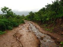 Mąci strumienia i drogę gruntową Obrazy Stock