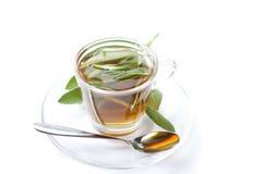 Mądra herbata na białym tle z świeżym ziele wśrodku teacup, zdjęcie stock