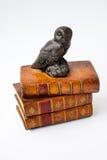 Mądra sowa siedzi na mądrych książkach Fotografia Royalty Free