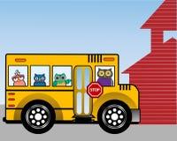 Mądre sowy w autobusie szkolnym Obrazy Royalty Free