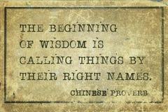 Mądrość CP zdjęcie royalty free