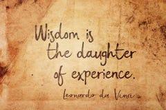 Mądrość jest Leonardo obraz royalty free
