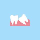 Mądrość zębów mieszkania ikona Obraz Royalty Free